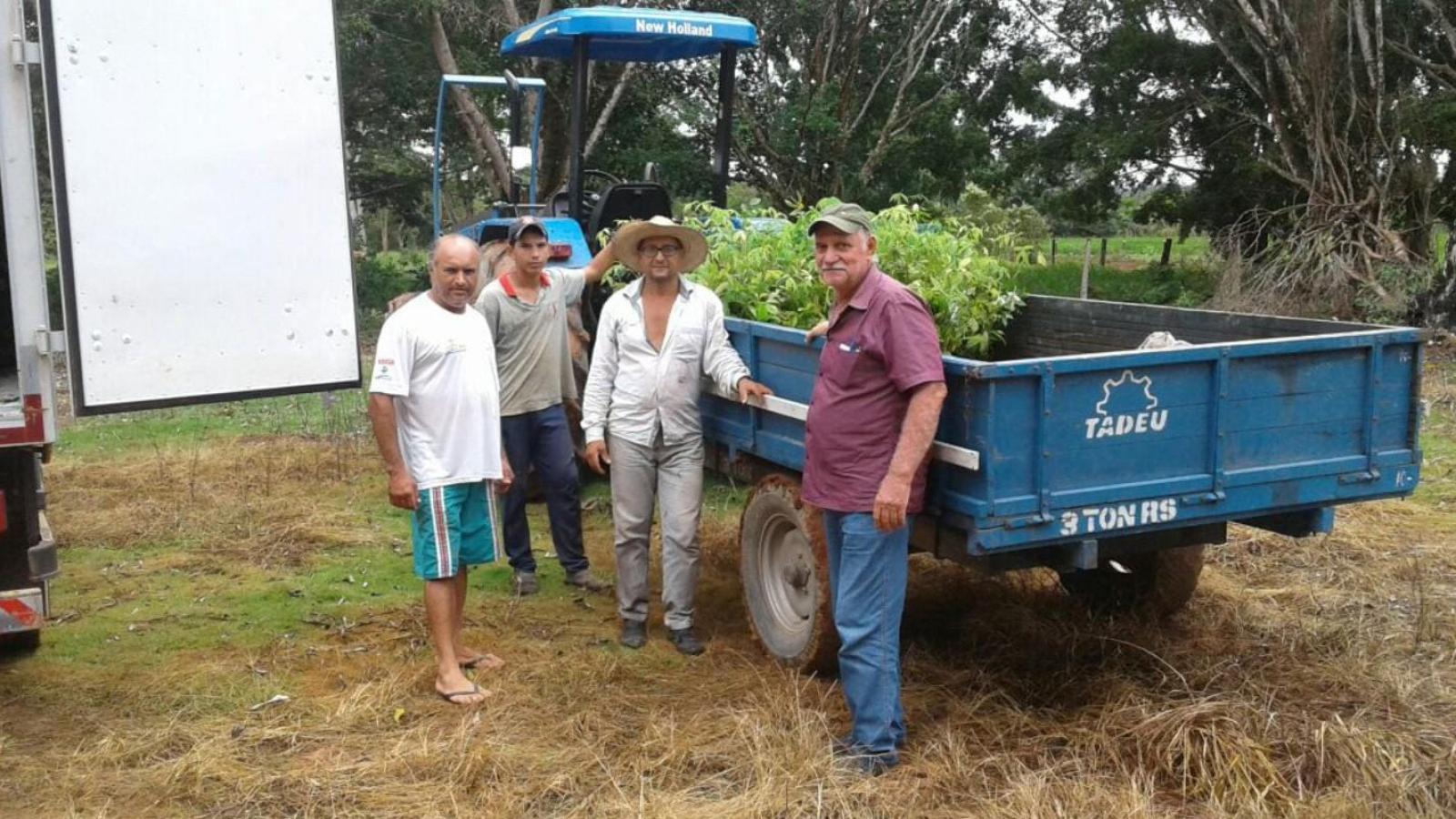 CHTP e Prefeitura de Paranaíta entregam mudas para reflorestamento