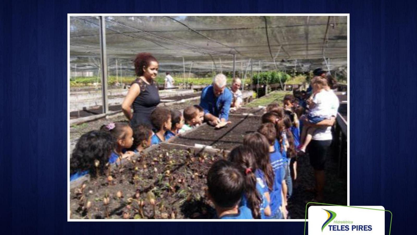 Semana do Meio Ambiente: CHTP estende ações ambientais para  todo mês de junho