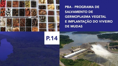 P.14 - Programa de Salvamento de Germoplasma Vegetal e Implantação do Viveiro de Mudas