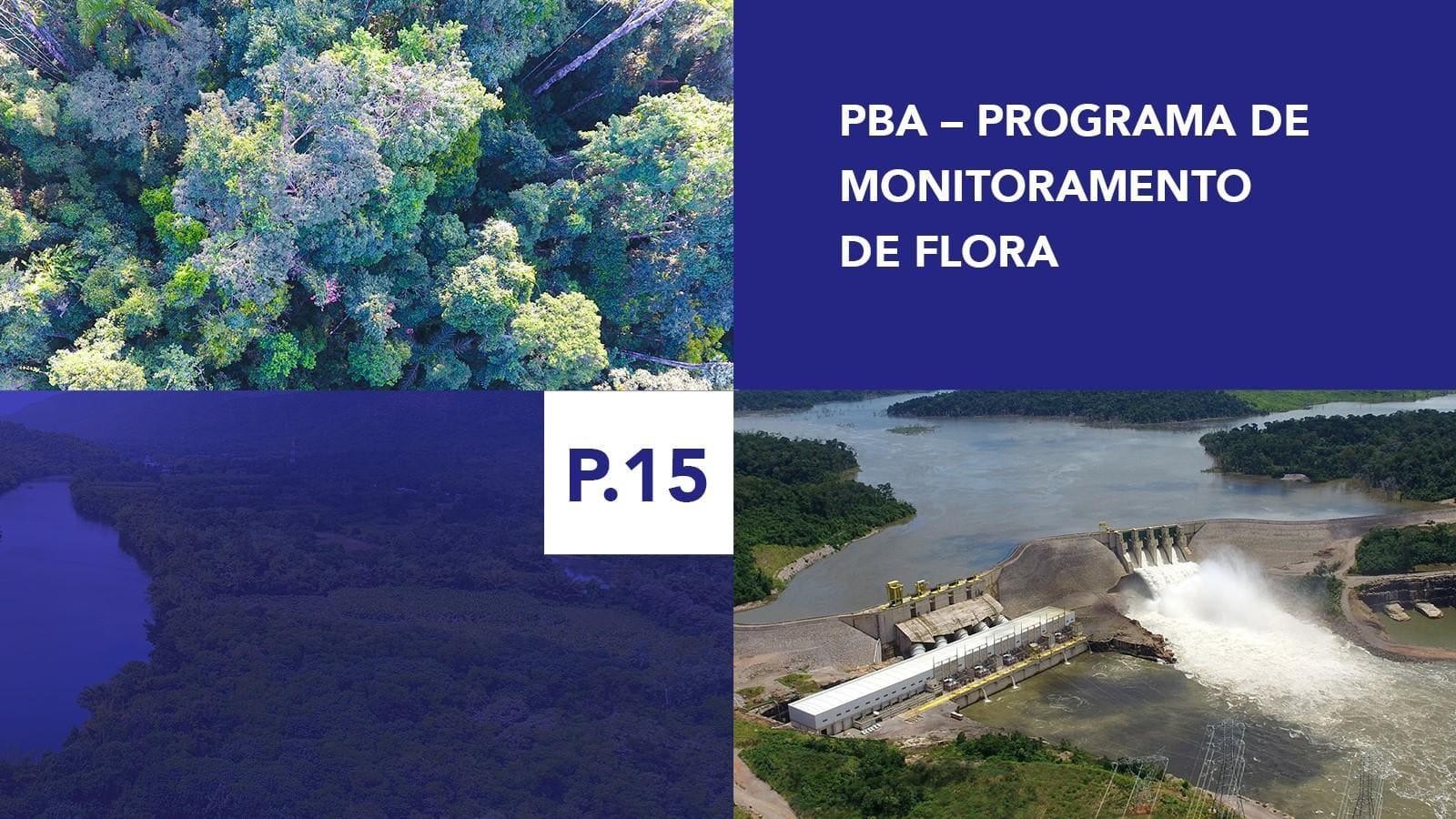 P.15 - Programa de Monitoramento de Flora