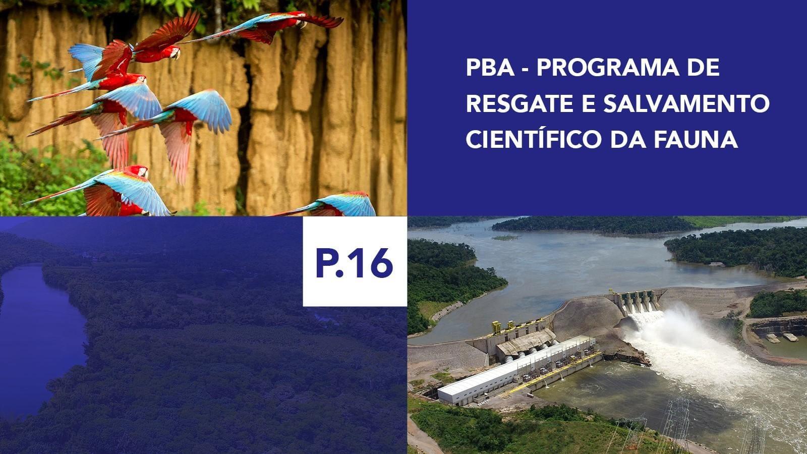 P.16 - Programa de Resgate e Salvamento Científico da Fauna