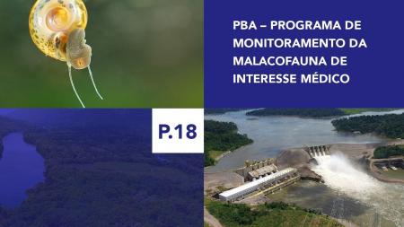 P.18 - Programa de Monitoramento da Malacofauna de Interesse Médico