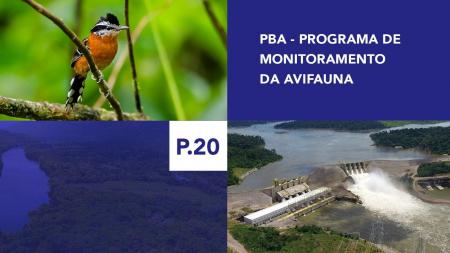 P.20 - Programa de Monitoramento da Avifauna