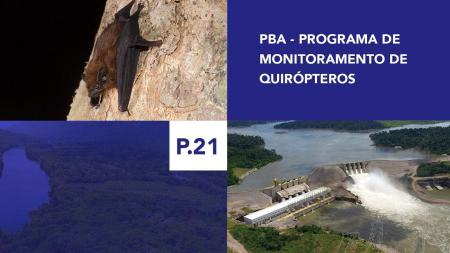 P.21 - Programa de Monitoramento de Quirópteros