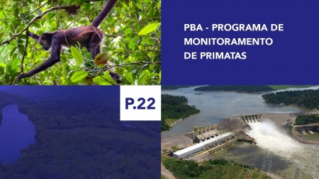 P.22 - Programa de Monitoramento de Primatas