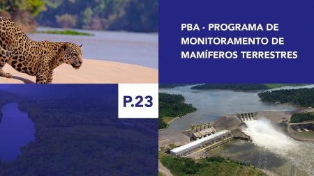 P.23 - Programa de Monitoramento de Mamíferos Terrestres