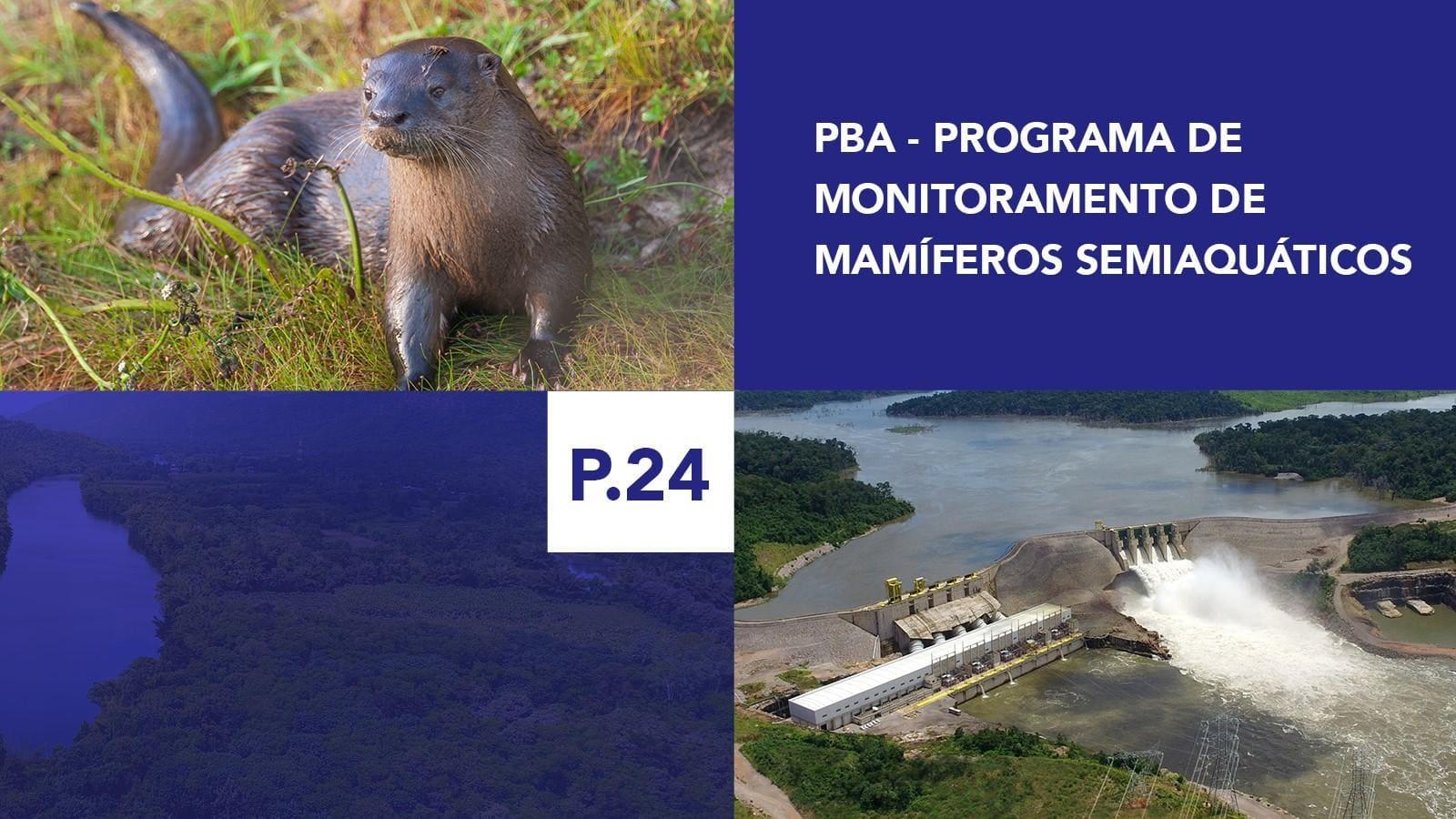 P.24 - Programa de Monitoramento de Mamíferos Semi-Aquáticos