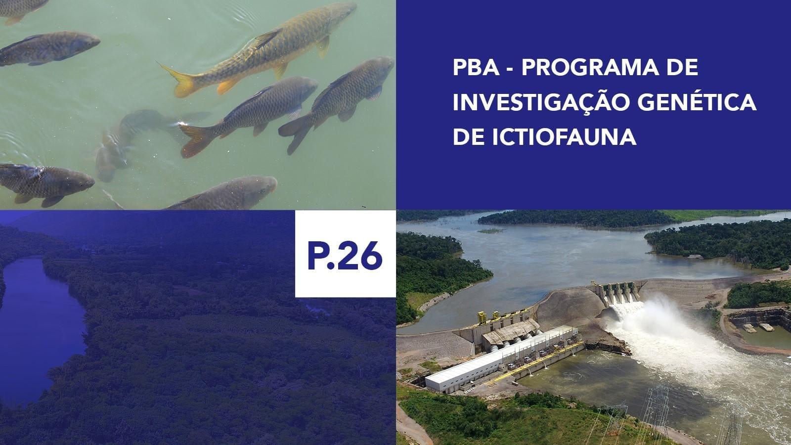 P.26 - Programa de Investigação Genética de Ictiofauna