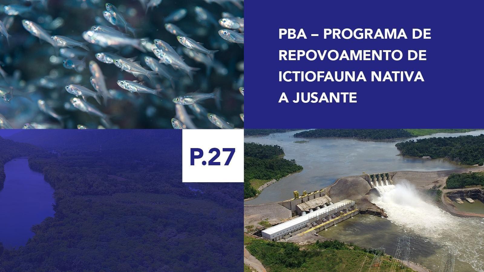 P.27 - Programa de Repovoamento de Ictiofauna Nativa a Jusante