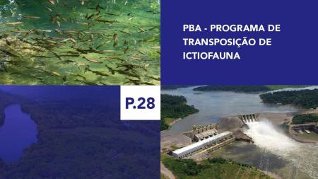 P.28 - Programa de Transposição de Ictiofauna