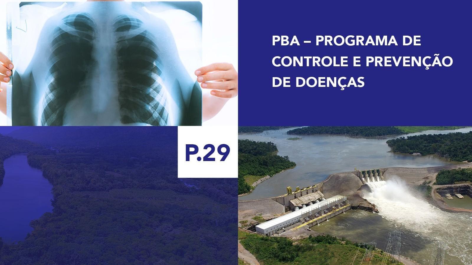 P.29 - Programa de Controle e Prevenção de Doenças