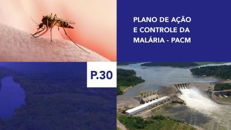 P.30 - Plano de Ação e Controle da Malária - PACM