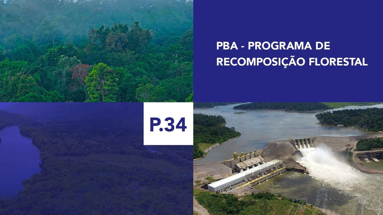 P.34 - Programa de Recomposição Florestal