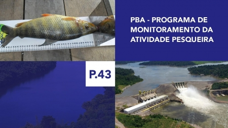 P.43 - Programa de Monitoramento da Atividade Pesqueira