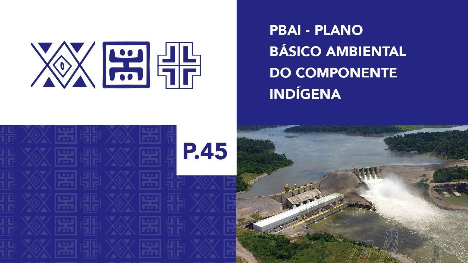 P.45 - Plano Básico Ambiental - Componente Indígena Kayabi