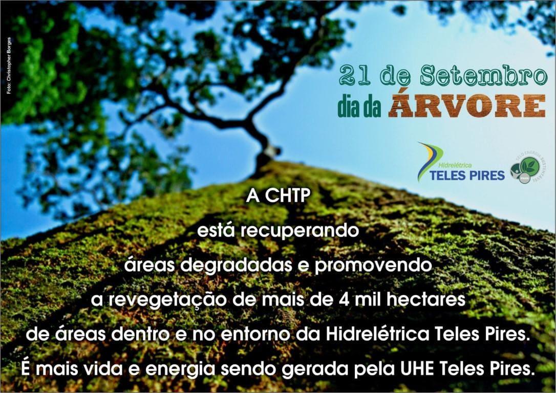 CHTP e o dia da Árvore